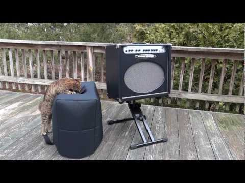 fend422p Tuki Padded Amp Cover for Fender Mustang GT200 2x12 Amplifier Combo
