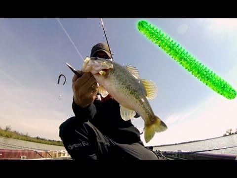 Spring Bass Fishing Tip for Stubborn Fish