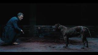 狗狗为了去救一个陌生人,竟把养大自己的主人咬死!