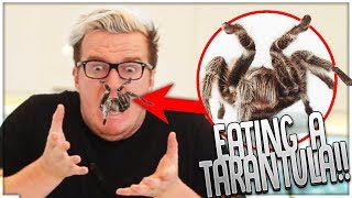 EATING A TARANTULA & SILK WORMS! (Worlds WEIRDEST Foods)