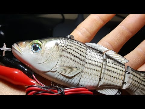 New Fully Motorized Fishing Lure – Beginning of the End for Live Bait?