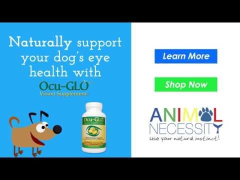 Ocu-Glo for Small Dogs (90 Gelcaps) Video