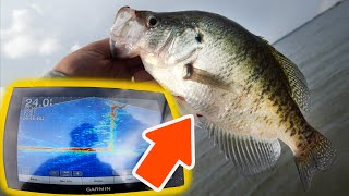 Livescope Fishing For SLAB Crappie (First Time Use AMAZING!)