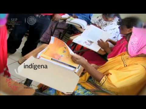 ¿Qué es el Instituto Nacional apara la Educación de los Adultos (INEA)?
