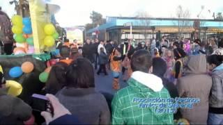 preview picture of video 'Carroza y Comparsa Flower Power Amics de S'Arenal Carnaval Playa de Palma 2013 (9-2-2013).mp4'