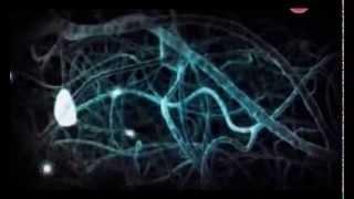 Смотреть онлайн Психология бессознательного мышления