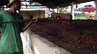 preview picture of video 'PATRIMONIO EXPRESS: tiempo de cacao'