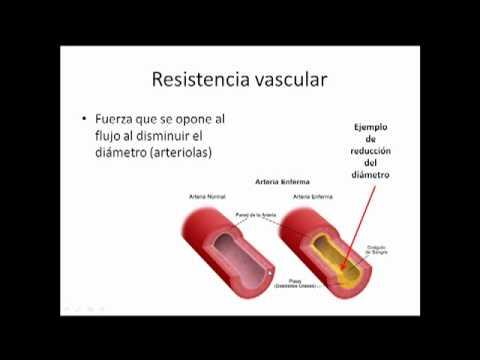 Muérdago para tratar la hipertensión