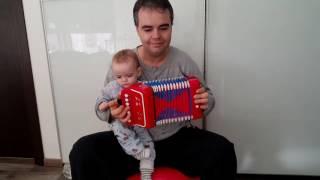 Mini toy accordion chicken bird dance