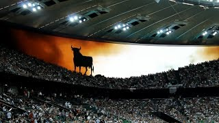 Экран заставка стадиона Краснодар перед матчем Тунис - Испания