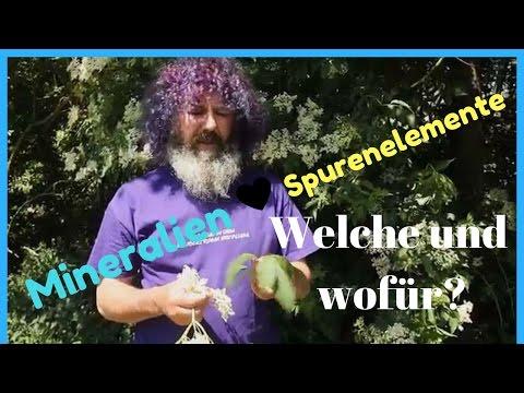 Robert Franz: Mineralien - ohne sie kein gesundes Leben! 💫