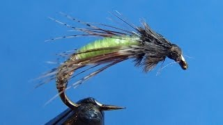 Barr's Graphic Caddis