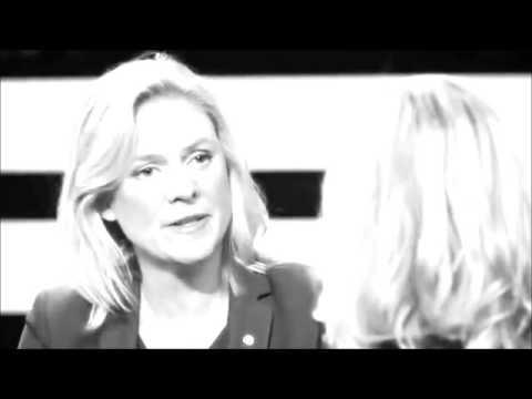 Video of Swedish Politics