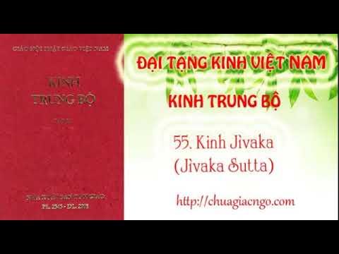 Kinh Trung Bộ - 055. Kinh Jivaka