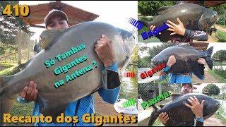 Anteninha total no Recanto dos Gigantes - Fishingtur na TV 410