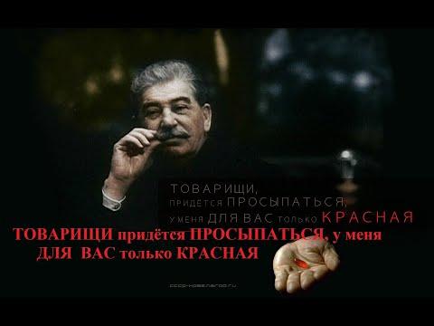 Является ли Российская Федерация «правопреемником» СССР?