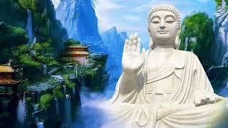 Chân Thật Niệm Phật Cực Lạc Hiện Tiền - Lời Phật Dạy
