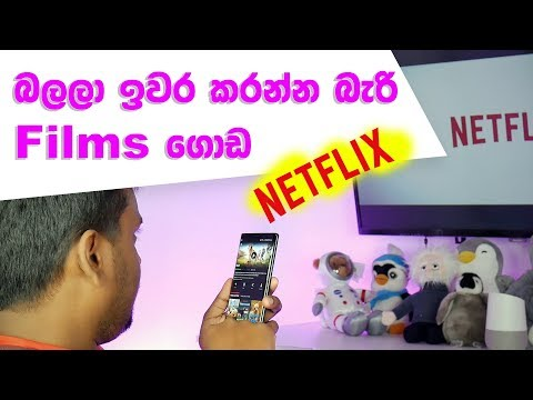 unlimited-movies-with-netflix-