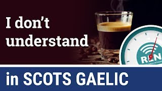 How to say I Don't Understand in Scots Gaelic - One Minute Gaelic Lesson 4