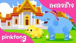 เพลงช้าง | เพลงช้าง ช้าง ช้าง ช้าง | เพลงสัตว์ | พิ้งฟอง(Pinkfong) เพลงและนิทาน