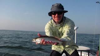Fly Fishing Tampa Bay Florida