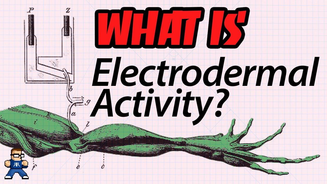 What Is Electrodermal Activity?