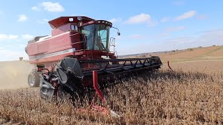 Wrapping Up Soybean Harvest!
