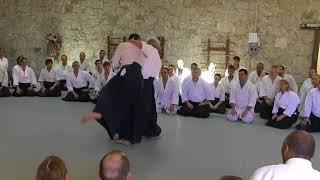 2017 Aikido Center Of Atlanta 50th Yoshimitsu Yamada   03
