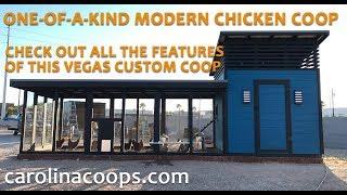 One-of-a-Kind Modern Chicken Coop In Las Vegas