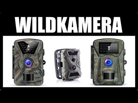 ► WELCHE WILDKAMERA KAUFEN? ★ Wildkameras Vergleich ★ Beutekamera / Wildkamera Test -  Jagdkamera