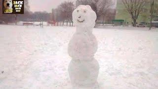 Что будет если собаке показать снеговика