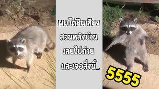 นี่แหละคือการโพสท่าที่สุดจริงๆ ฮาเกิน... #รวมคลิปฮาพากย์ไทย