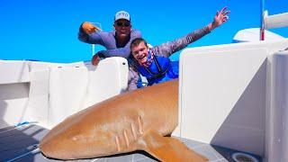 Fishing MASSIVE Sharks off TROPICAL COAST! (ft. Deer Meat For Dinner)