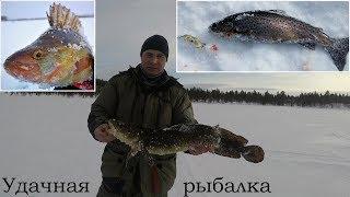 Рыбалка на глухом озере спб