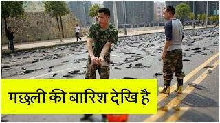 Fish rain in the worlds in hindi 2017 fish rain is true story in hindi