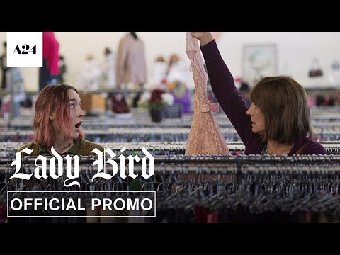 Lady Bird TV Spot 'Dream'