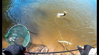 Рыбалка на реке рыча астраханская область