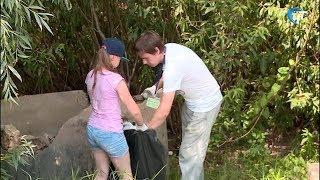 Новгородские волонтеры отметили экватор Года добровольца плоггингом