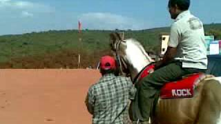 preview picture of video 'Venkata Ramana horse riding Video in Mahabaleswar'