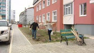 Жить в ладу с соседями. Объединяющая акция прошла в одном из дворов Нижневартовска