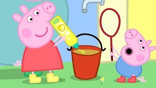 Peppa Pig Official Channel | Peppa Pig and George Pig Play With Bubbles