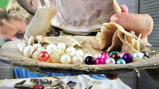 GIANT OYSTER OPENING WITH REAL COLORED FRESHWATER PEARLS ON FUN HOUSE TV