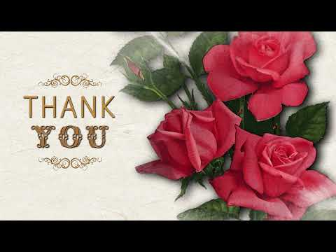 Thank you! Спасибо тебе!💖 Анимационная открытка #WhatsApp