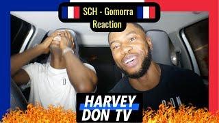 SCH   Gomorra Reaction #Harveydontv #Raymanbeats