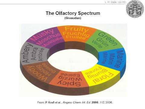 Es ist nicht Mager-, 2012 abzumagern, in der hohen Qualität zu sehen