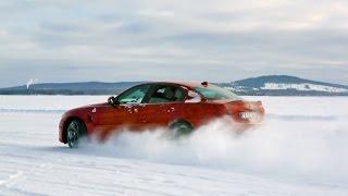 Is Alfa Romeo Cool Again? Quadrifoglio & NEW Stelvio Drive