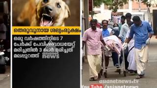 Stray dog menace continues in Kerala with over 1lakh more  bitten in last one year