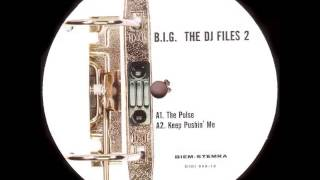 B.I.G. - The Pulse