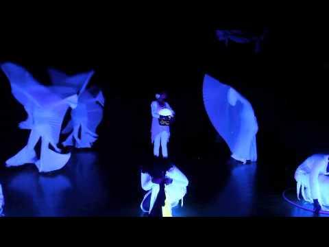 Critical Mass Dance Company (CMDC)