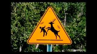Part 2 - Try Not To Laugh  Funniest Road Signs Fails